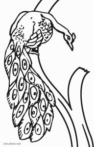 Realistic Peacock Coloring Pages