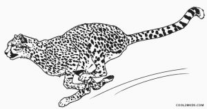 Running Cheetah Coloring Pages