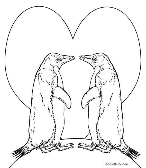 How to Draw a Penguin Coloring Pages for Kids, Toddlers - Easy ... | 689x600