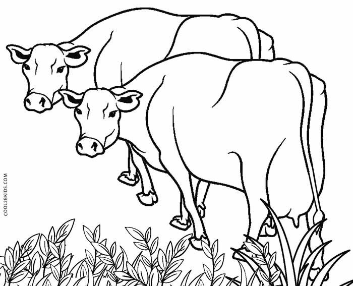 Free Printable Cow Coloring Pages For Kids | Cool2bKids