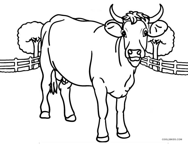 bird coloring pages realistic cows - photo#29