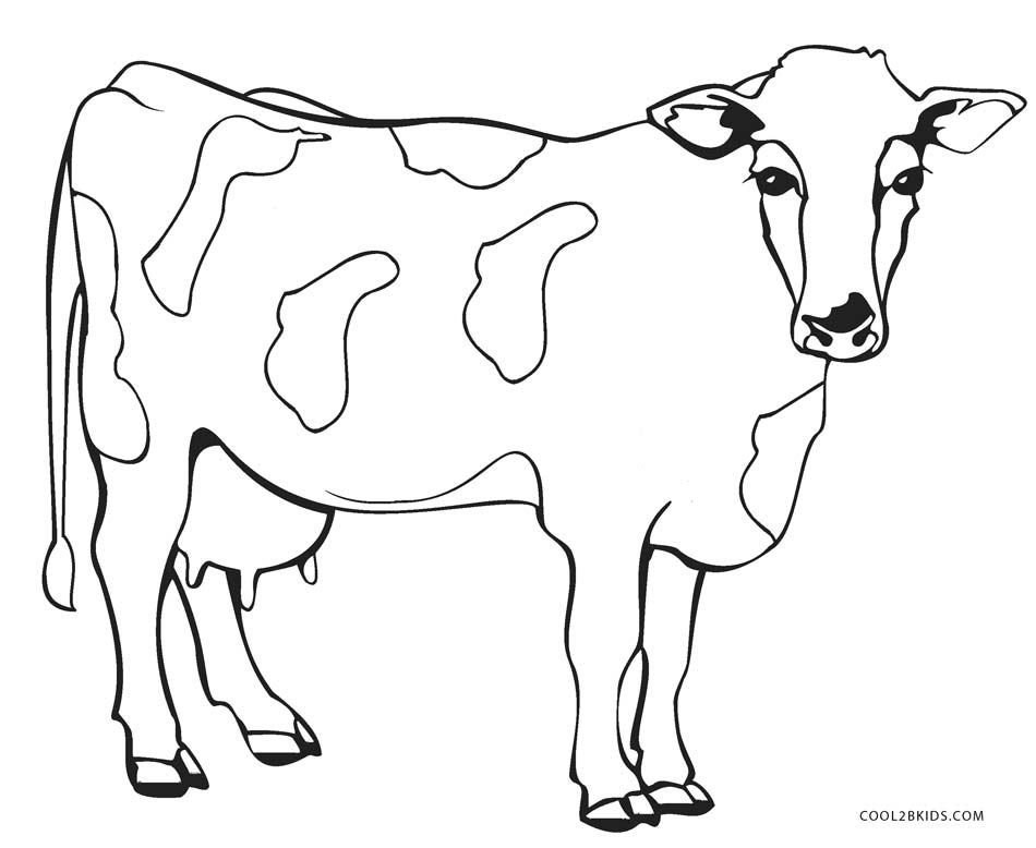 Cow Coloring Pages. cow coloring pages printable cute baby calf ...
