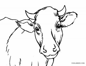 painting cow coloring pages - photo#36