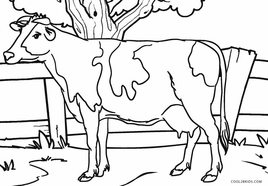 realistic cow coloring pages