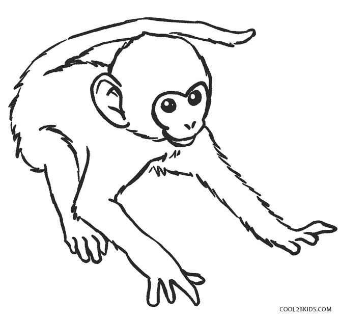 monkey coloring pages - Coloring Pages Of Monkeys