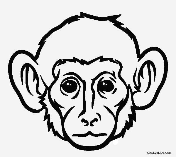 monkey face coloring pages - Coloring Pages Of Monkeys