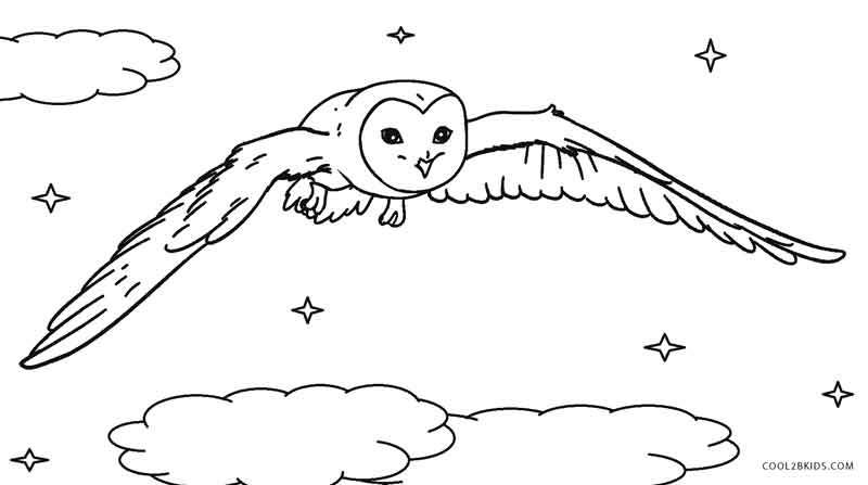 This is a graphic of Sly barn owl coloring page