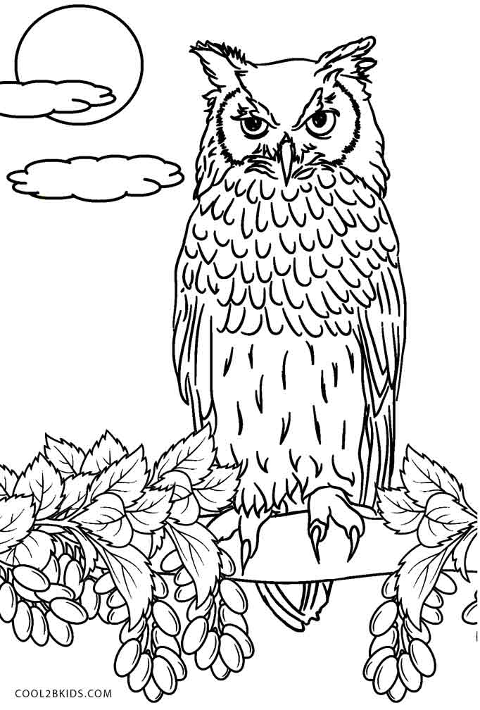 Image Result For Coloring Page Printabe For Kids
