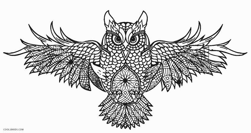 Lucrative image with printable owl coloring pages for adults