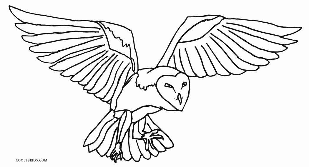 printable owl coloring pages - Printable Owl Pictures