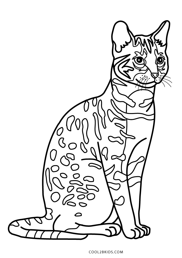 cat pages for coloring - photo#3