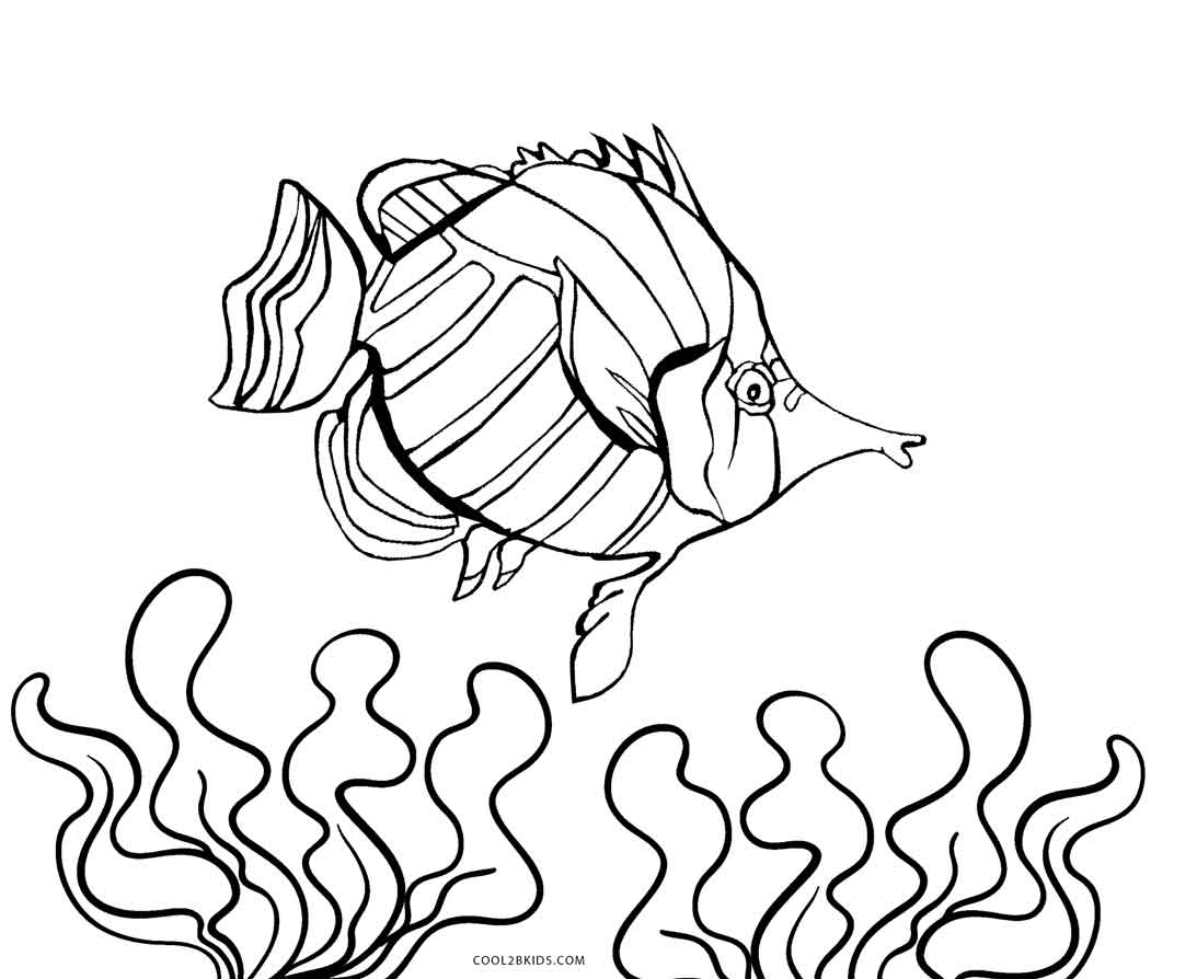 printable fish coloring pages - Printable Fish Coloring Pages