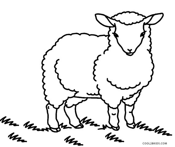 free big horn sheep Coloring Pages | Coloring Pages Blog Image ... | 477x570