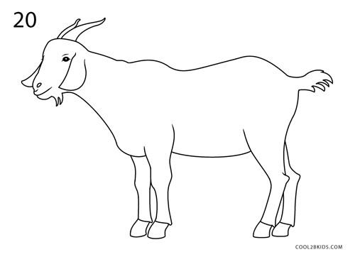 how to draw a goat step 20