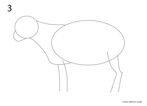 how to draw a goat step 3