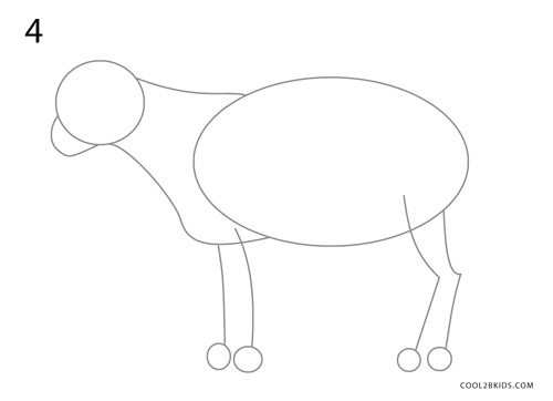 How to Draw a Goat (Step by Step Pictures) | Cool2bKids