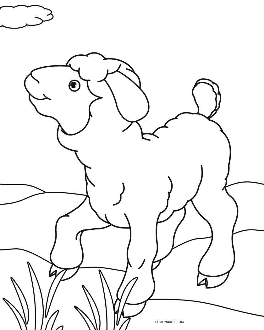 Free Printable Sheep Face Coloring