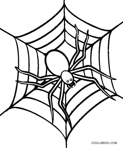 Free Printable Spider Coloring Pages For Kids Cool2bkidsrhcool2bkids: Coloring Pictures Of Halloween Spiders At Baymontmadison.com