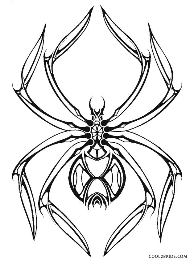 Zany image regarding printable spider