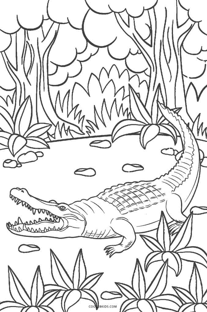 alligator coloring pages free - photo#21