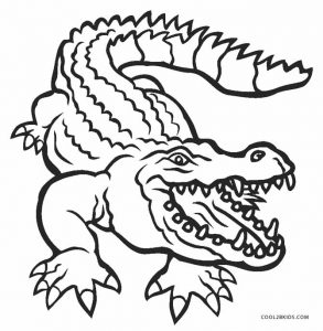alligator coloring pages free - photo#9