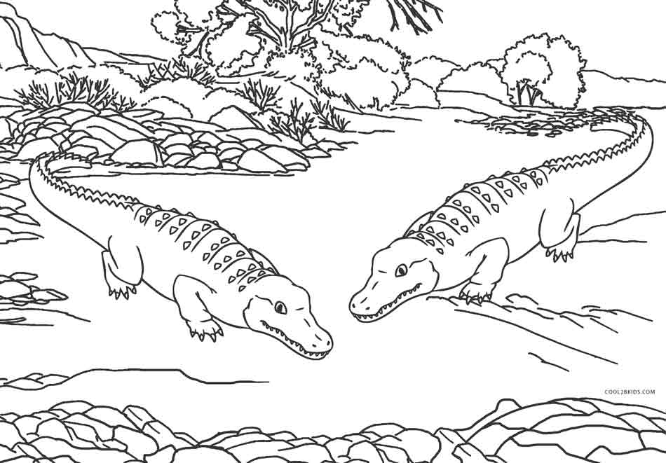 Zoo Critters Coloring Page  Free Printable Worksheets for