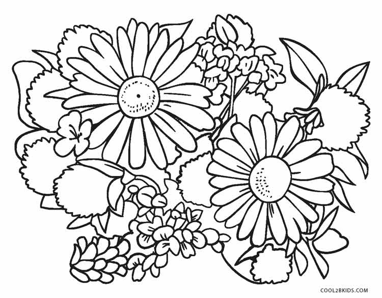 color pages flowers - free printable flower coloring pages for kids cool2bkids