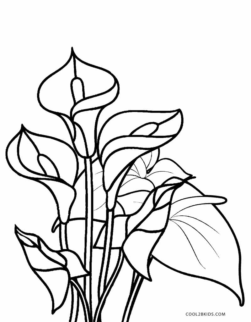 pictures of flowers coloring
