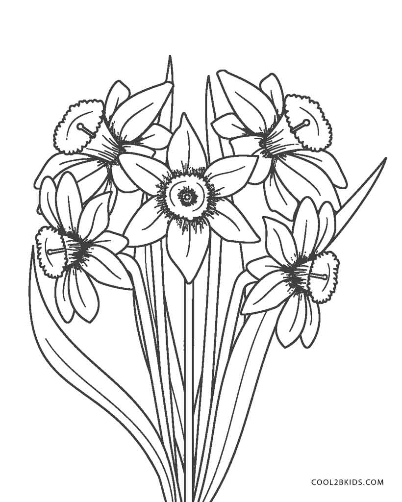 flower coloring pages color | Free Printable Flower Coloring Pages For Kids | Cool2bKids