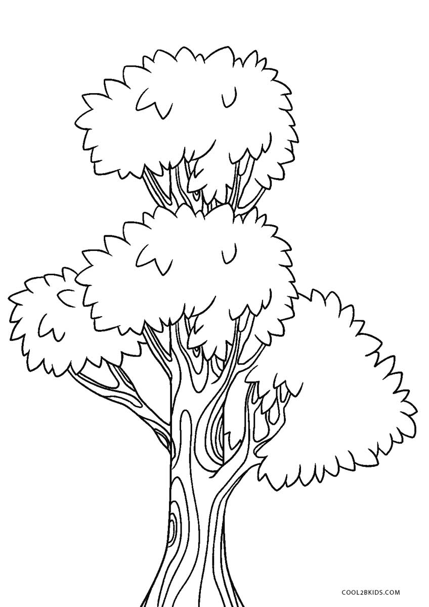 image regarding Printable Tree Coloring Page named Cost-free Printable Tree Coloring Webpages For Youngsters Neat2bKids