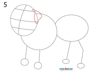 how to draw a english bulldog step by step