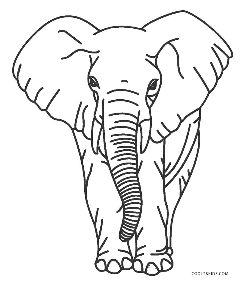 This is a photo of Printable Pictures of Elephants with regard to paint by number