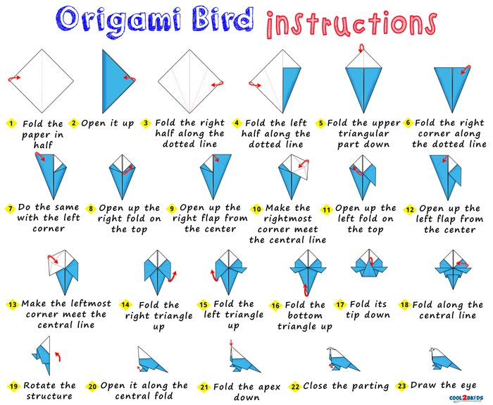 Step by Step Instructions for Making an Easy Origami Bird out of Paper Cool2bKids