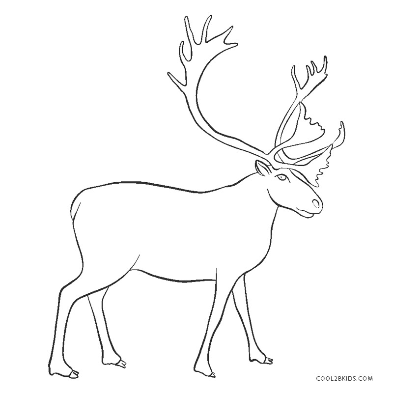 Free Printable Reindeer Coloring Pages For Kids Cool2bkids
