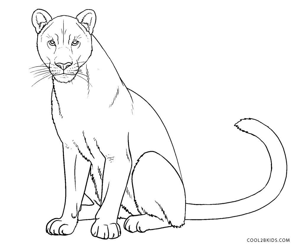 Free Printable Lion Coloring Pages