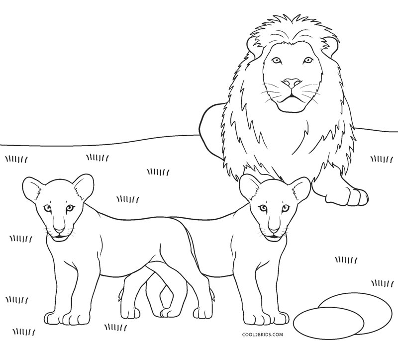 This is a graphic of Versatile Printable Lion Coloring Pages