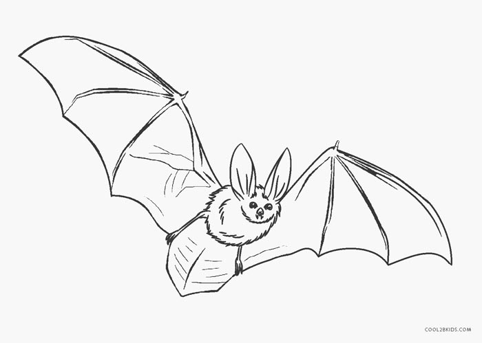 graphic relating to Printable Bat called Totally free Printable Bat Coloring Internet pages For Little ones Great2bKids