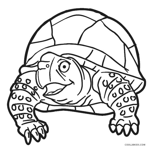 picture relating to Printable Turtle Coloring Pages called No cost Printable Turtle Coloring Web pages For Young children Awesome2bKids