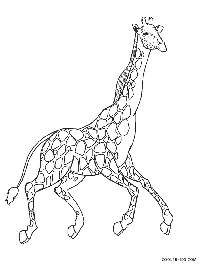 childrens awards coloring pages - photo#13