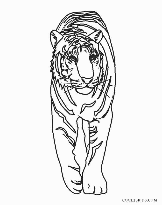 Realistic Tiger Face Coloring Pages - Get Coloring Pages | 850x671