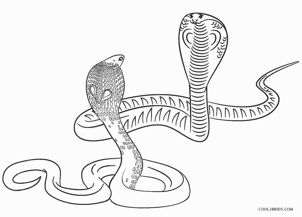 Dibujos De Serpientes Para Colorear Páginas Para Imprimir