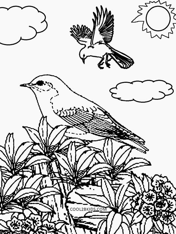Dibujos de Naturaleza para colorear - Páginas para ...