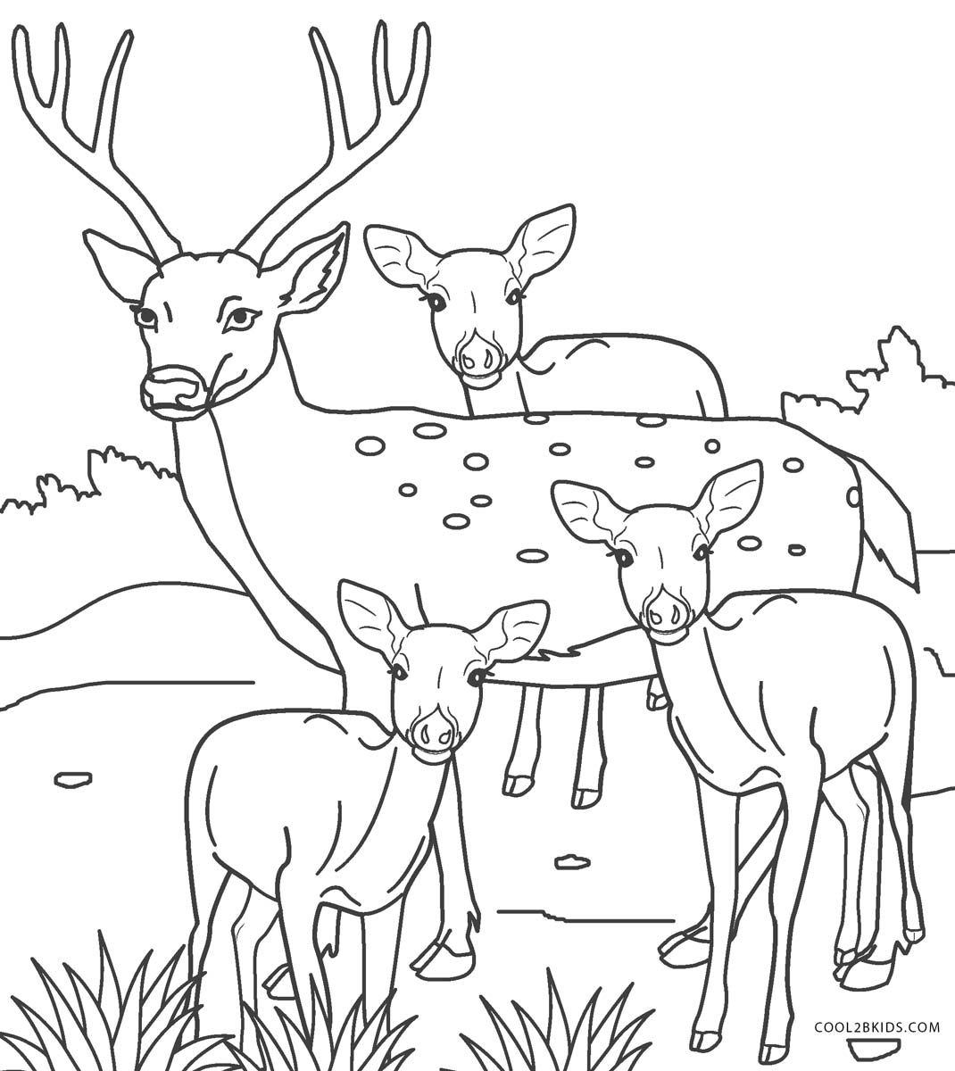 Free Printable Deer Coloring Pages For