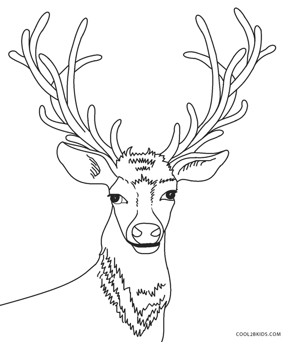 Deer head coloring pages | Zentangle vector Reindeer for adult ... | 700x587