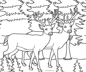 Free White Tailed Deer Coloring Pages To Print, Download Free Clip ...   250x300