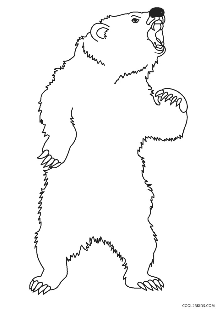 coloring pages of a grizzly bear – coursity.me | 1000x707