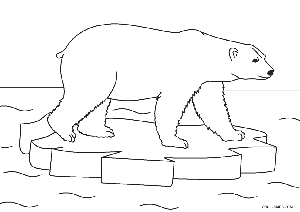 - Free Printable Bear Coloring Pages For Kids