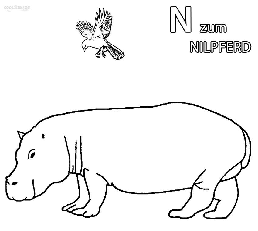 ausmalbilder nilpferd  malvorlagen kostenlos zum ausdrucken