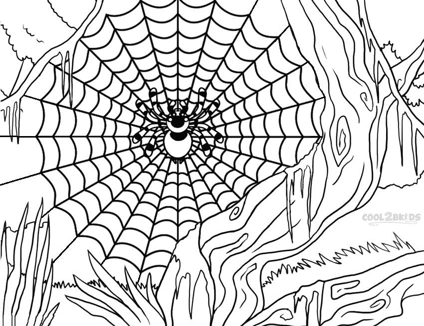 ausmalbilder spinnennetz  malvorlagen kostenlos zum