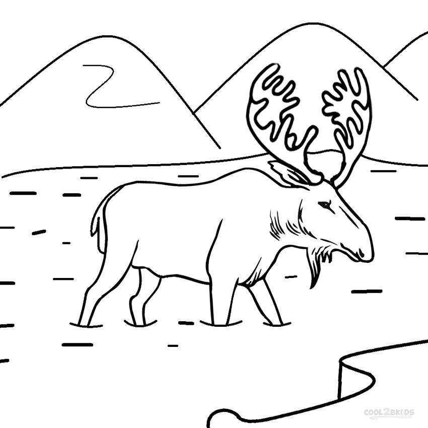 ausmalbilder elch  malvorlagen kostenlos zum ausdrucken